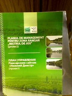 planul de management