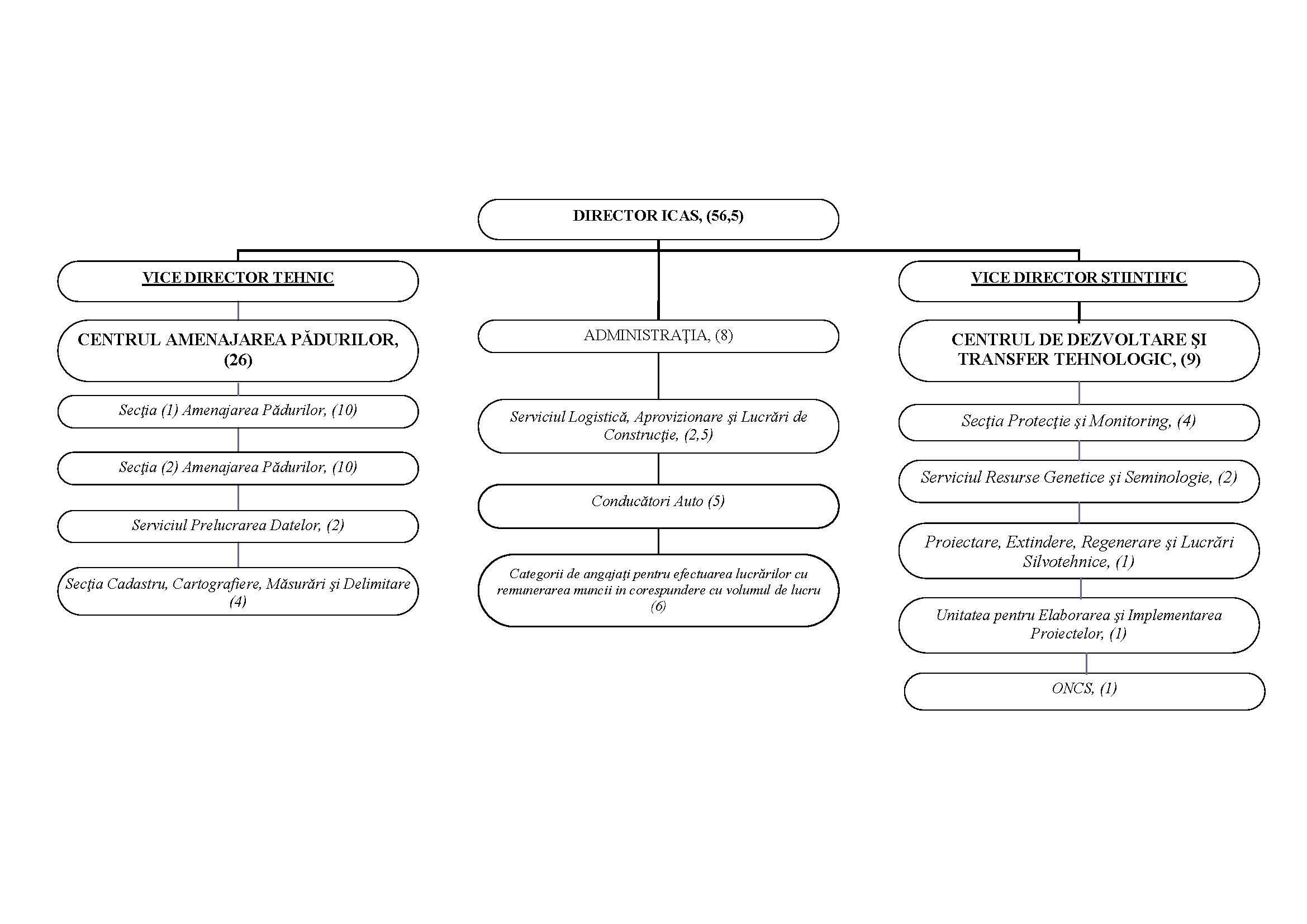 Structura organizaţională ICAS Moldova